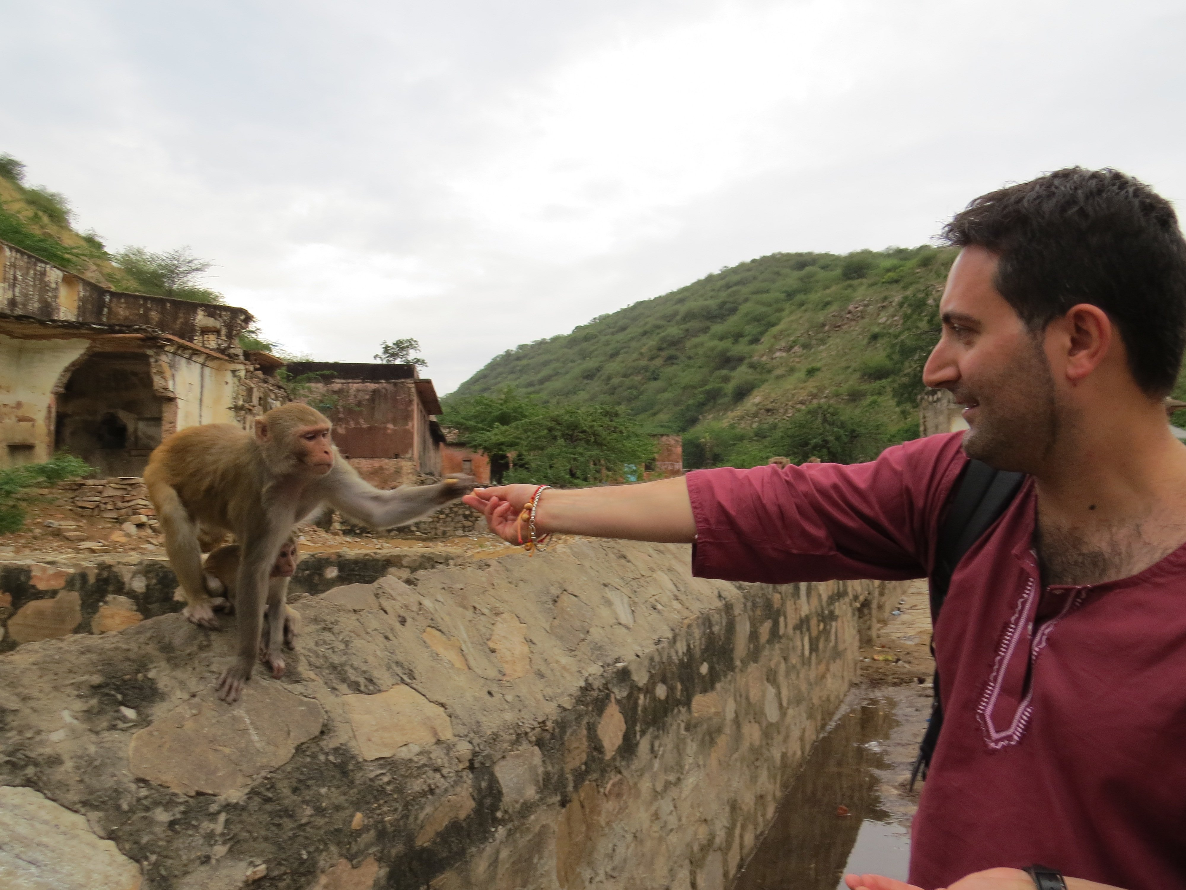 Me feeding a monkey and its baby